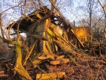 01-2011-maerz-schw-03