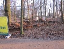 04-2011-maerz-rasen-11