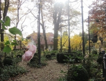 08-2011-nov-impr-11